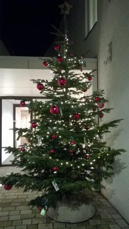 Weihnachtsbaum BIB 18